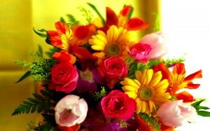 fleur-offrir